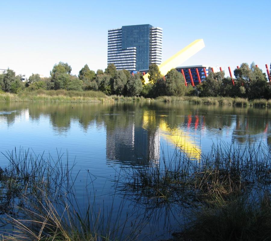 Wetland refections 002